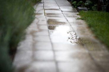 1. Wünsche an einen Garten
